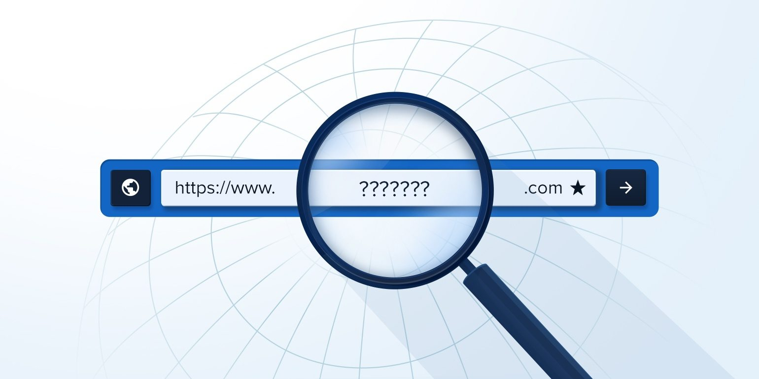 A Complete Guide to Domain Search
