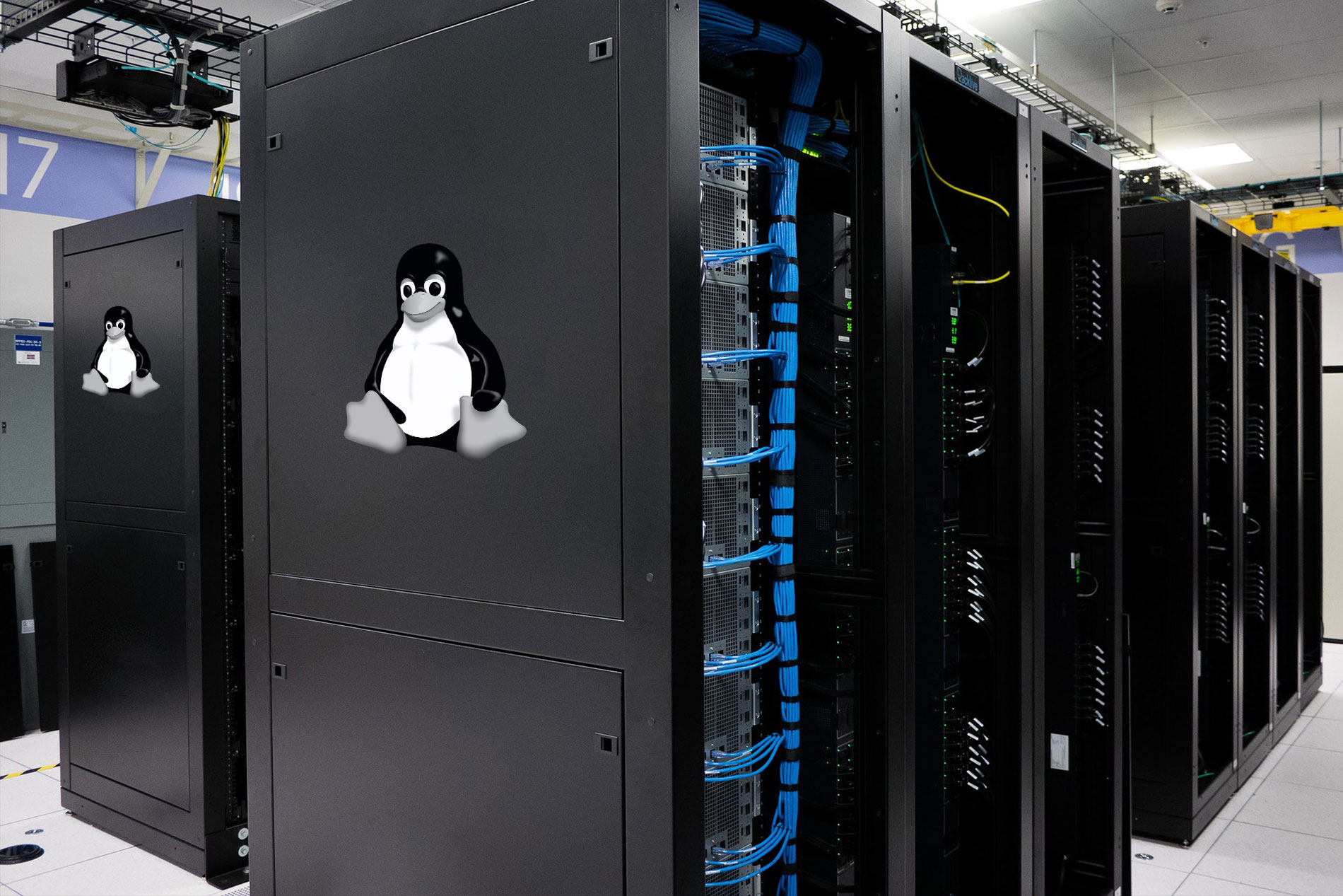 Linux Shared Hosting Service