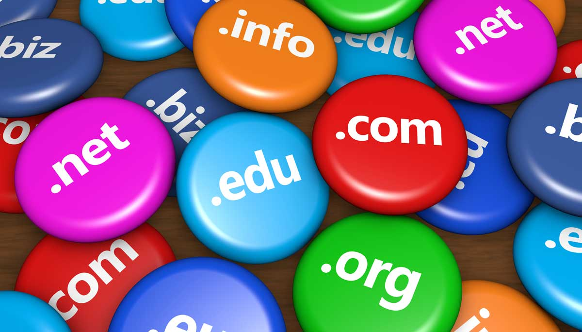 Understand a Domain Name